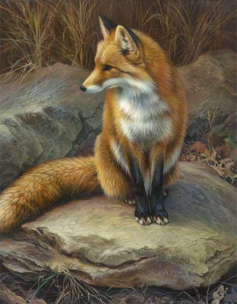 Fox Oil Painting